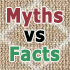 myths and facts about carpet cleaning